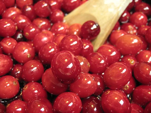 cranberries-fresh